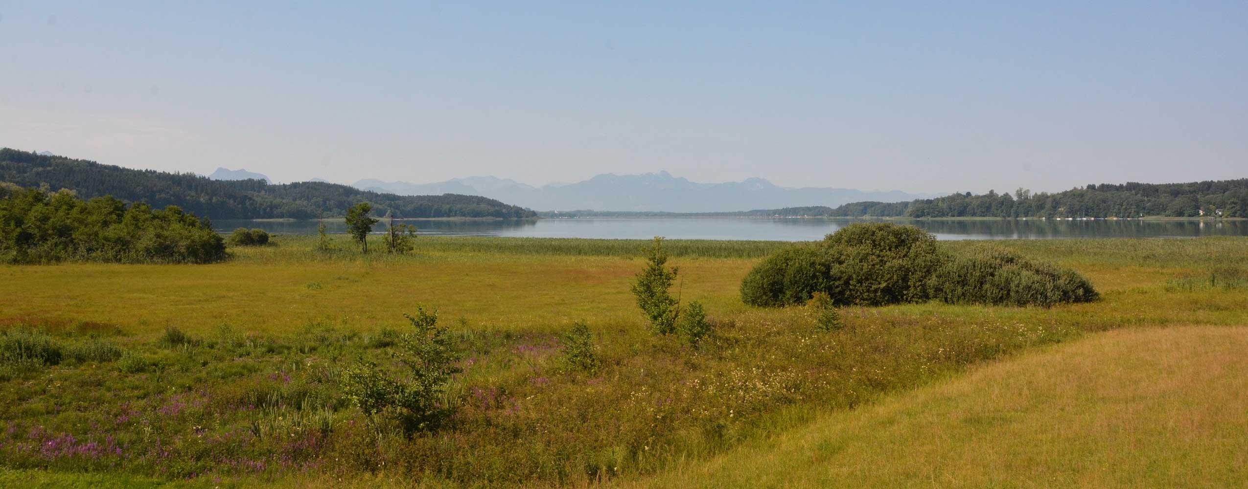 Ausblick-Aussichtsturm-Simssee